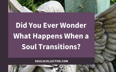 Did You Ever Wonder What Happens When a Soul Transitions?